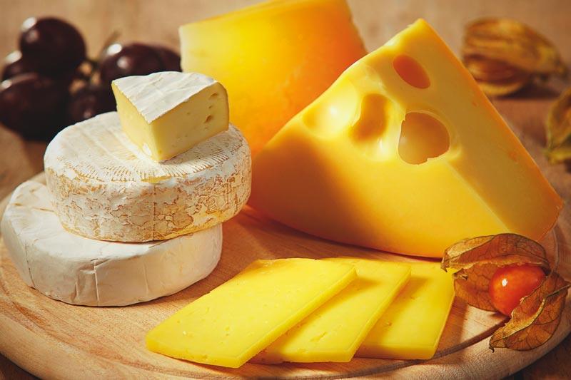 El queso suizo aliado perfecto para adelgazar - Ayuda para