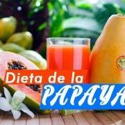 dieta-de-la-papaya