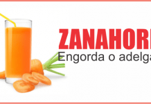 zanahoria engorda
