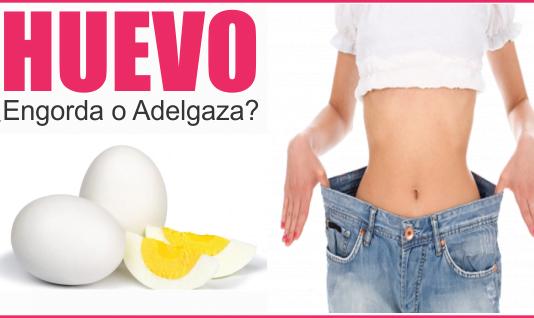 huevo engorda o adelgaza