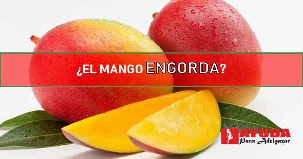 el mango engorda