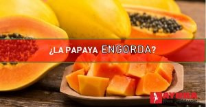la papaya engorda