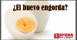 huevo hervido