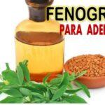 Beneficios del fenogreco para adelgazar